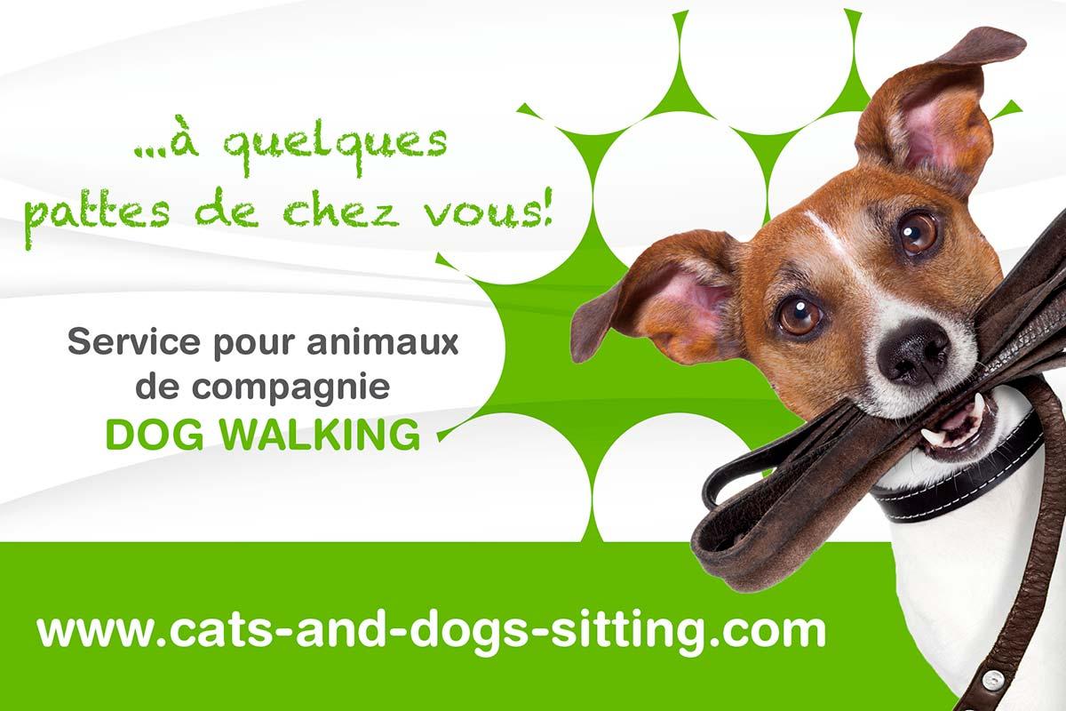 facebook cat's & dog's